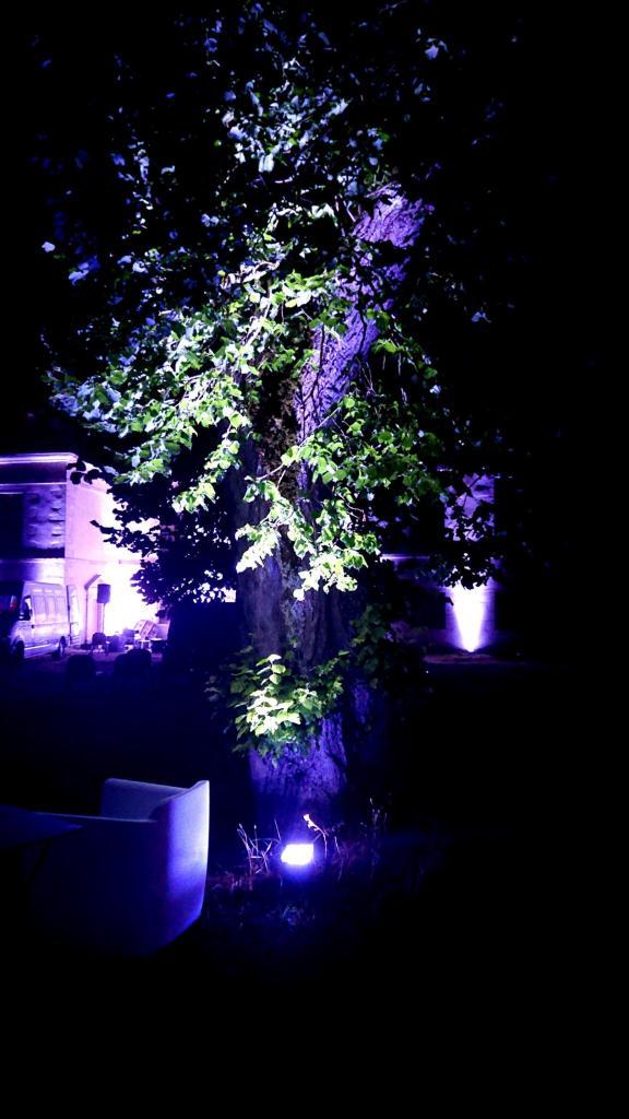 Décoration projecteurs LED sur batterie